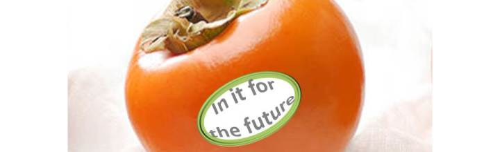2017 Australian Persimmon Industry Conference & Field Day – Register Now!